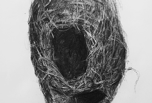 Bird Nest No.11 - detailed charcoal drawing of nature still life by Singapore contemporary artist Liu Ling