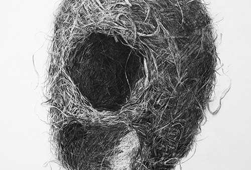 Bird Nest No.3 - detailed still life drawing by Singapore charcoal artist Liu Ling