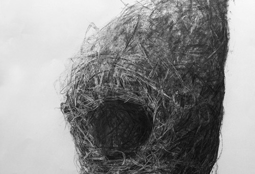 Bird Nest No.9 - black and white still life drawing by Singapore charcoal artist Liu Ling