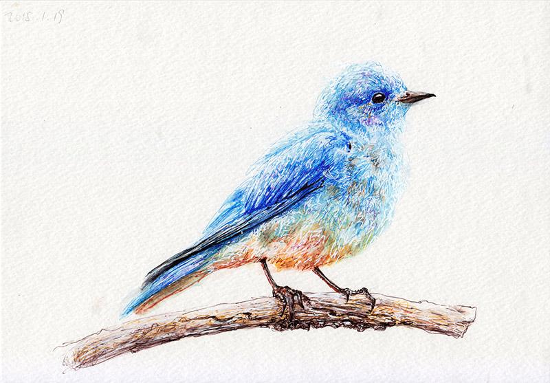 Pen Drawings Liu Ling Artist From Singapore